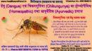 डेंगू (Dengue) एवं चिकनगुनिया (Chikungunya) का होम्योपैथिक (Homeopathic) तथा आयुर्वेदिक (Ayurvedic) इलाज